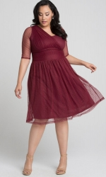 PRE ORDER: Emilia Mesh Dress - Burgundy
