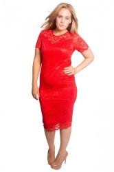 PRE ORDER: Floral Lace Bodycon Dress - Red