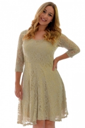 PRE ORDER: Pretty Lace Lined Skater Dress - Stone