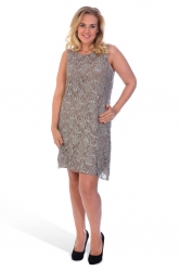 PRE ORDER: Elegant Short Length Lace Sequin Shift Dress - Mocha