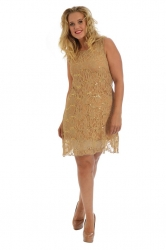 PRE ORDER: Elegant Short Length Lace Sequin Shift Dress - Gold
