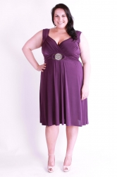 Stunning Purple Plus Size Dress w/ Silver Medallion